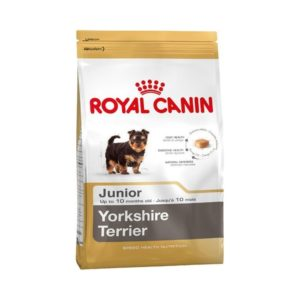 BHN YORKSHIRE TERRIER JUNIOR 1,5KG